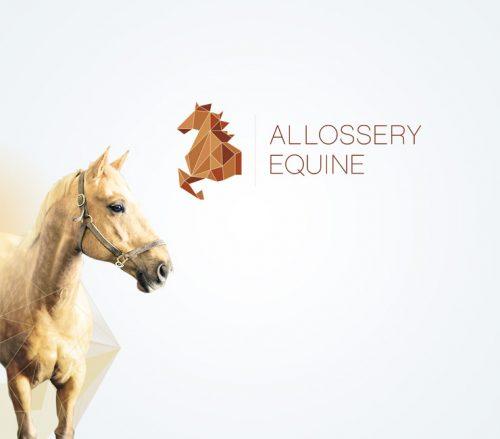 Alossery_Equine